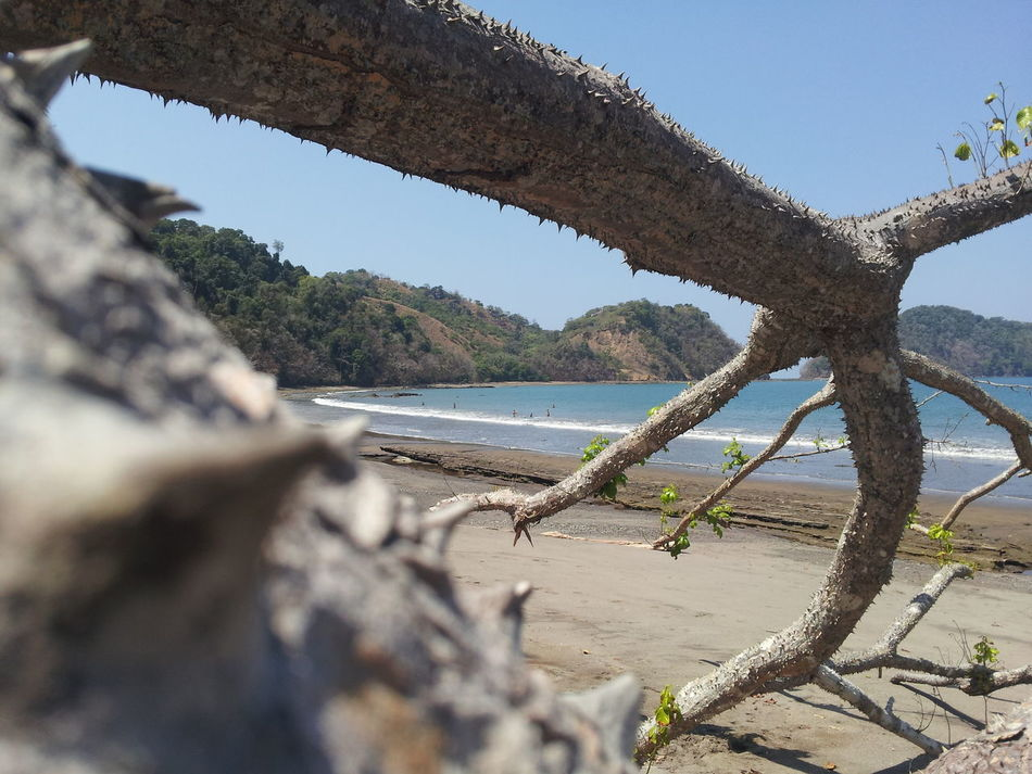 Beautiful stock photos of costa rica, Beach, Costa Rica, Day, Focus On Background