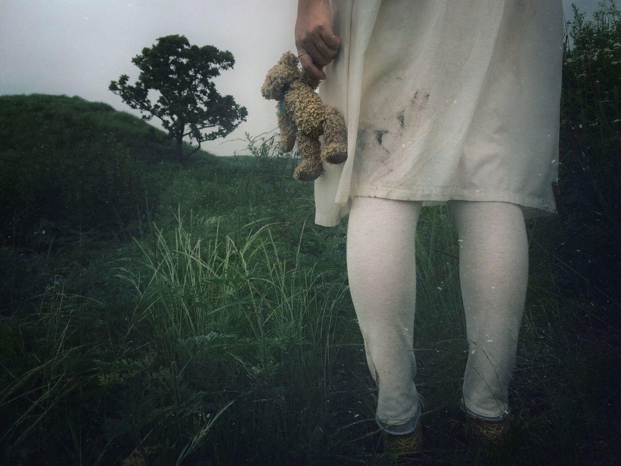 Beautiful stock photos of teddy bear, Day, Dress, Grass, Hill