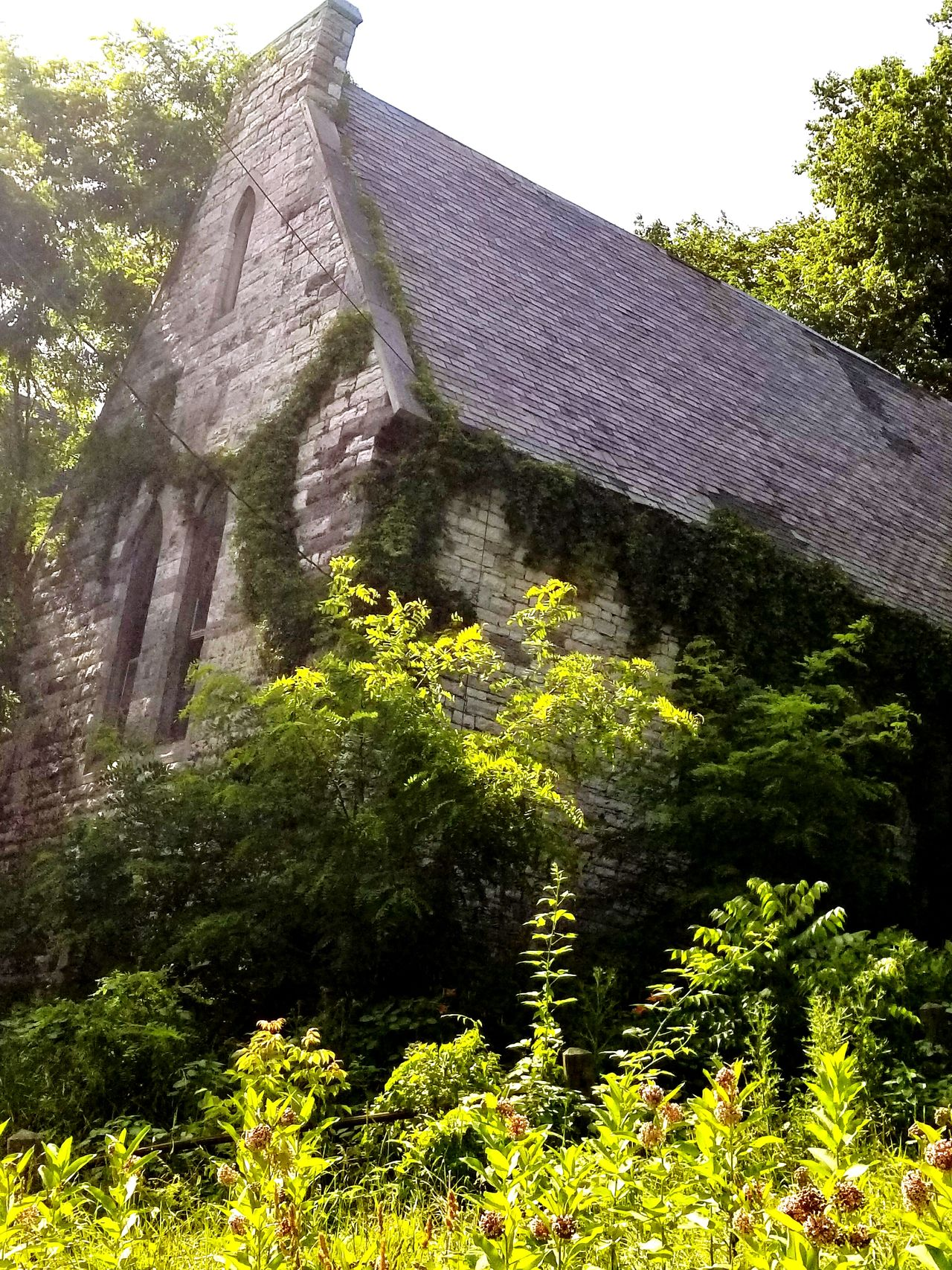 Growth Nature No People Old Buildings Old Ruin Old Church Vintage Church ⛪