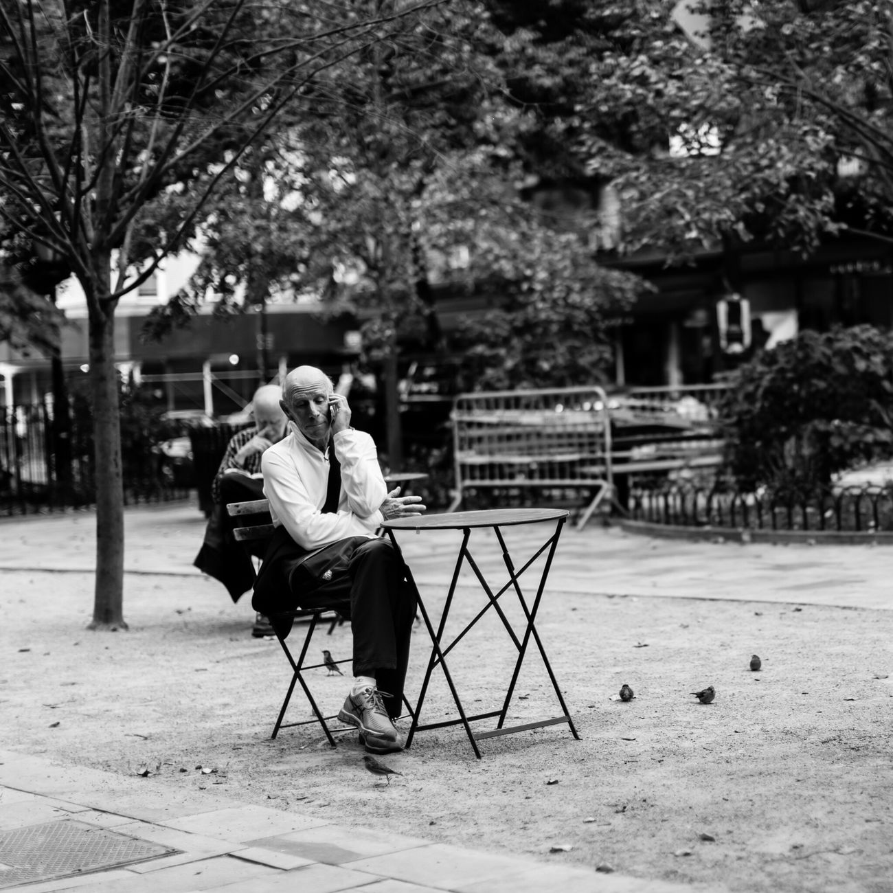 Street Portrait 8908 | shot in NYC | 50 mm Real People Bench Sitting Full Length Outdoors Tree One Person Day People Adult Streetphotography Magnolia Bakery Black And White City Life New York New York City Blackandwhite Canon Manhattan
