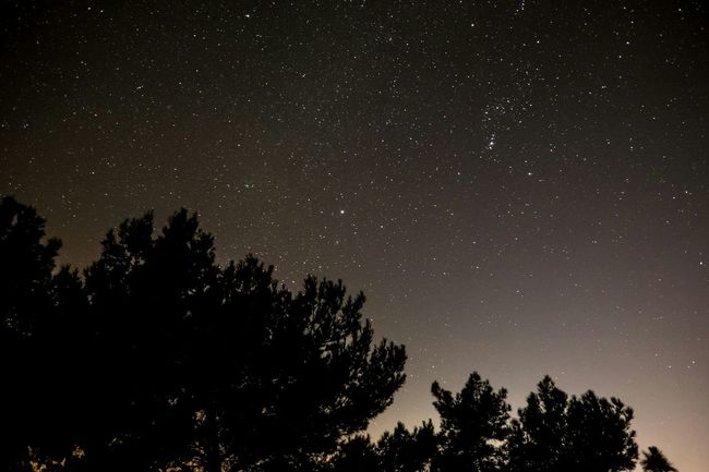 Trees Starry Sky Milky Way Night Photography Under The Stars Nature Photography