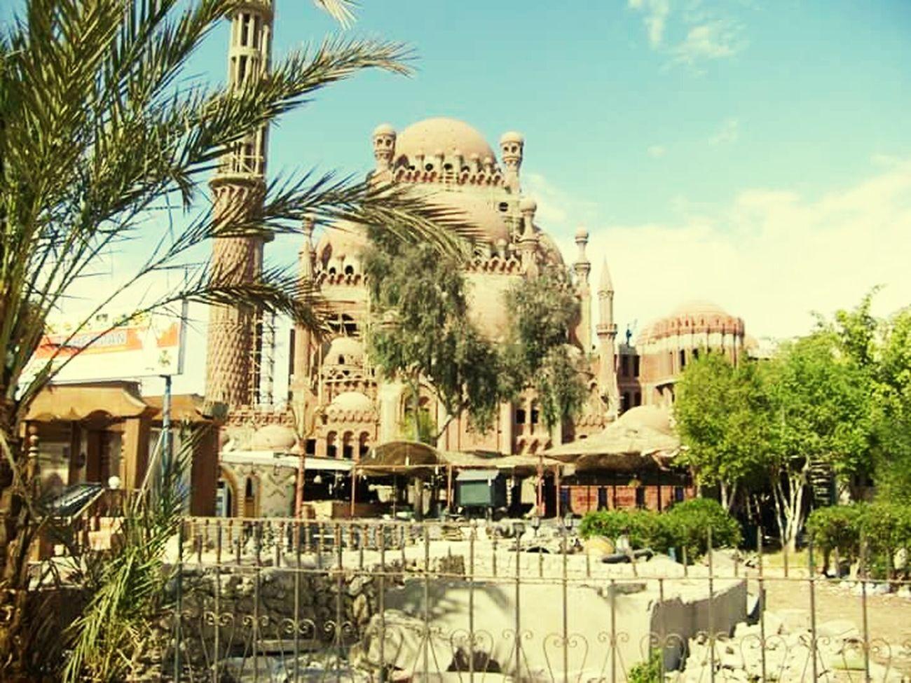Egypt Tourism египет