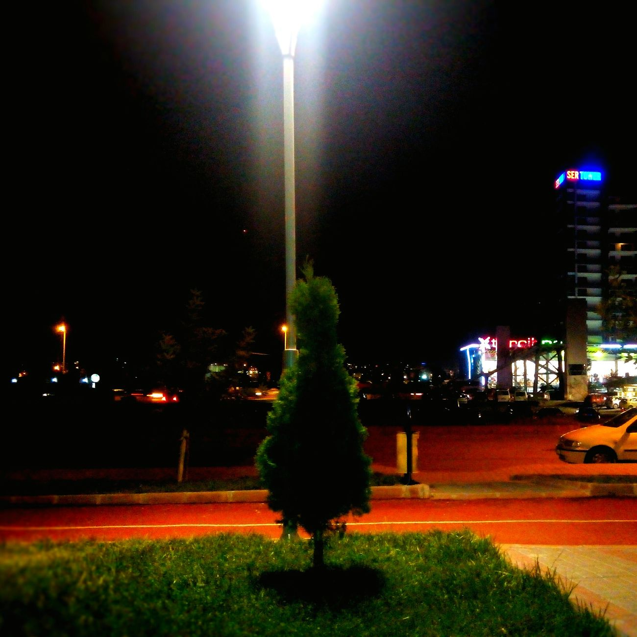 Walking Around Zeki Bulut Parkı WithGirls Night Tree Mazı