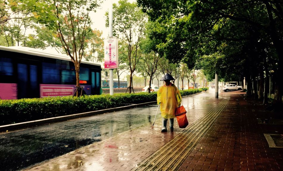 Alone Walk Full Length Tree Wet Transportation Season  Rain Casual Clothing Walking Person Young Adult Outdoors Day Streetphotography People EyeEm Gallery