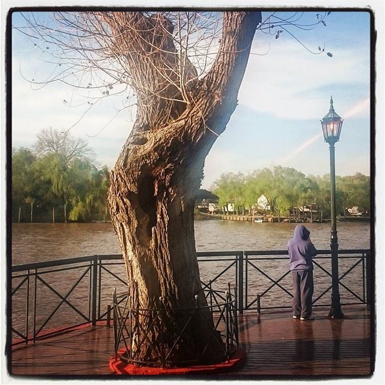 tree, sky, railing, day, river, water, built structure, tree trunk, architecture, bare tree, outdoors, sculpture, standing, branch, nature, full length, one person, city, people