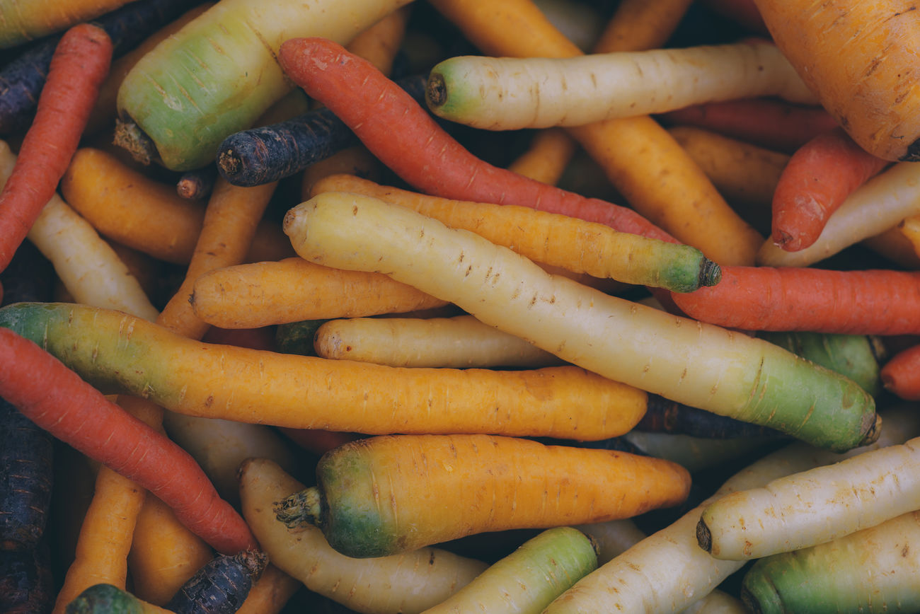 Different kinds of Carrots Backgrounds Carrot Carrots Close-up Cultivation Day Different Colors Food Freshness Full Frame Healthy Eating Kinds Large Group Of Objects Market No People Outdoors Sorts  Variation Vegetable