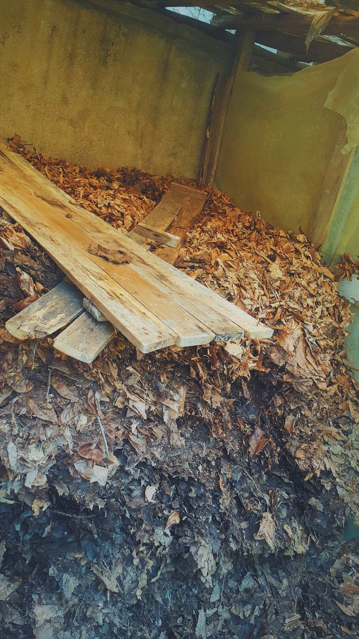 wood - material, no people, leaf, deforestation, log, timber, lumber industry, abundance, high angle view, day, outdoors, large group of objects, nature, woodpile, close-up