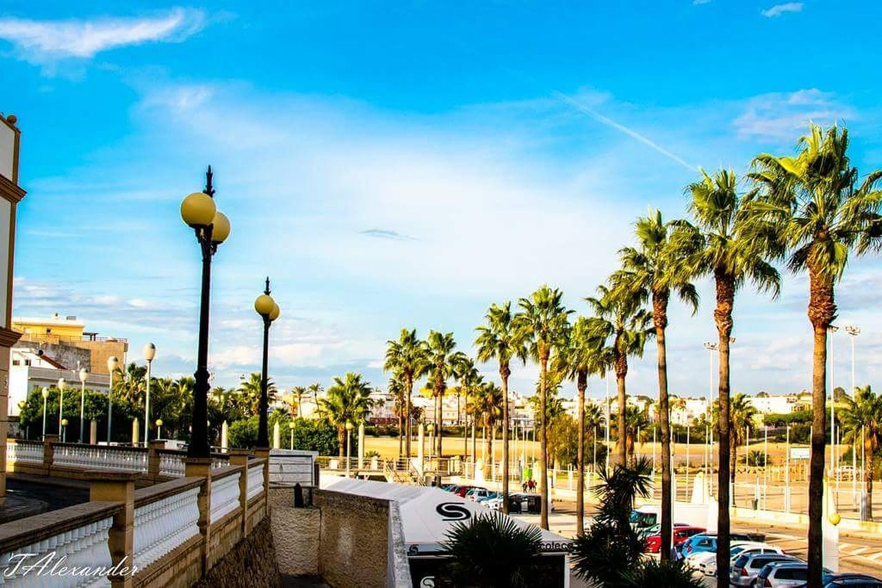 Palm Tree Tourism Vacations No People Sky Day Outdoors Rota Spain ✈️🇪🇸 Eyemphotography EyeEm Gallery Nikonphotography Colorful