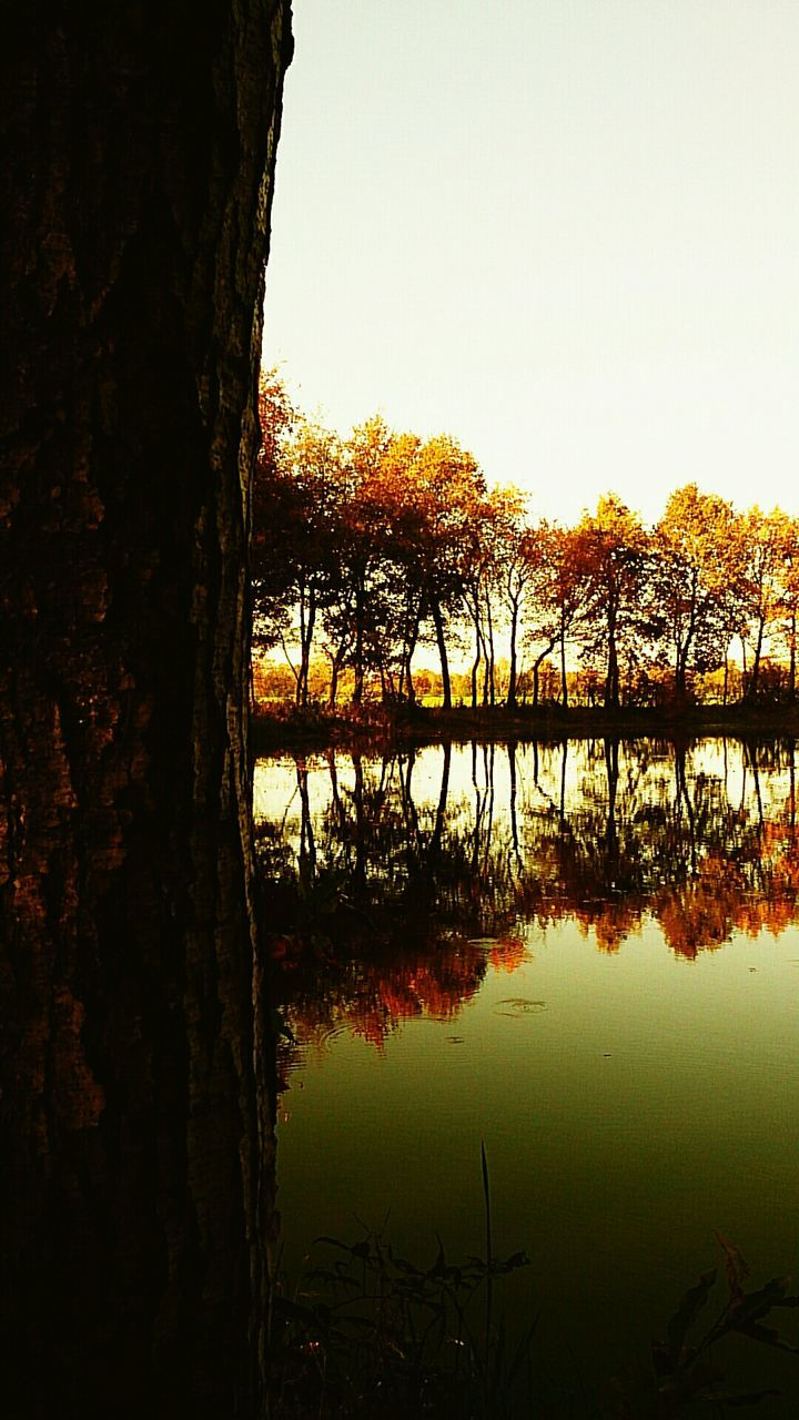 reflection, tree, water, lake, nature, tranquil scene, beauty in nature, outdoors, tranquility, scenics, no people, silhouette, sunset, day, sky, tree trunk, built structure