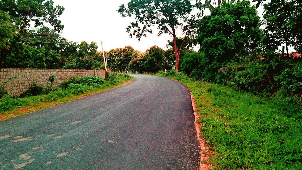 Nature at its best ... Bangalore Photographer Life Eyemphotography Bannarghata Road Happy To See Greenery Gogreen No Need For Extras . Save Green Earth