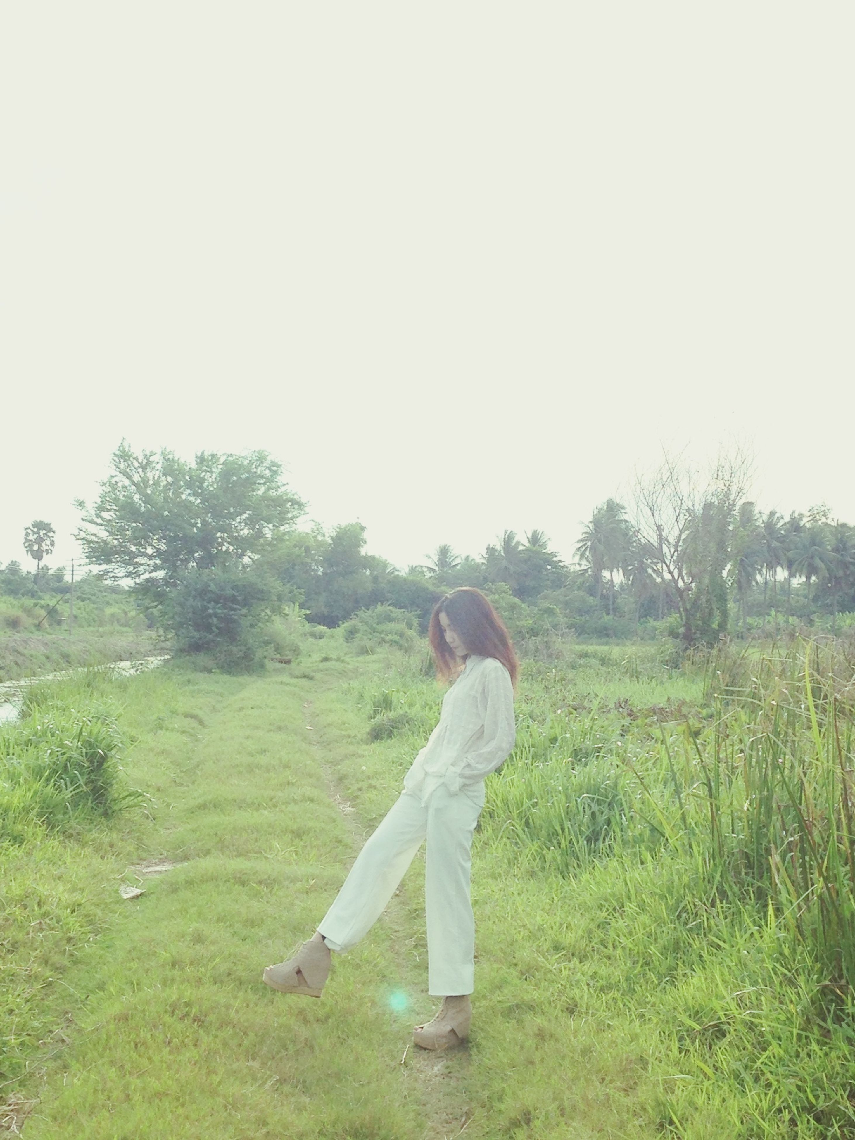 grass, lifestyles, full length, field, leisure activity, casual clothing, clear sky, grassy, person, standing, young adult, tree, three quarter length, green color, copy space, nature, growth, young women