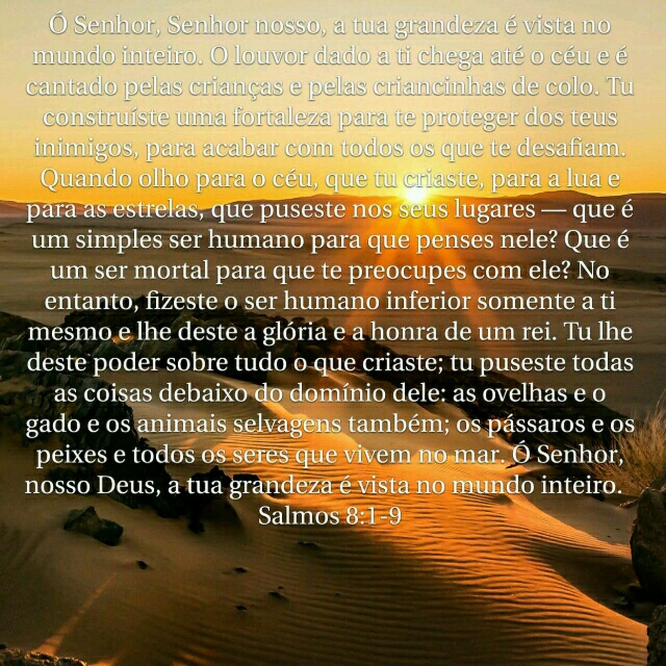 Ibavassuncao Salmos