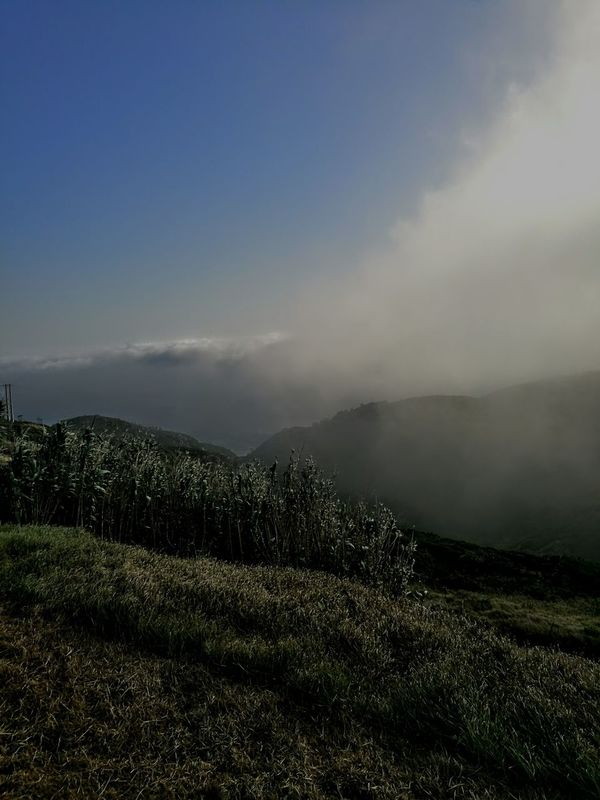 Fog Bank Mountain Landscape Beauty In Nature Non-urban Scene Sky Nature Blue Cloud - Sky Mountain Range Outdoors Countryside Tranquil Scene Scenics Tranquility Solitude Day Tourism
