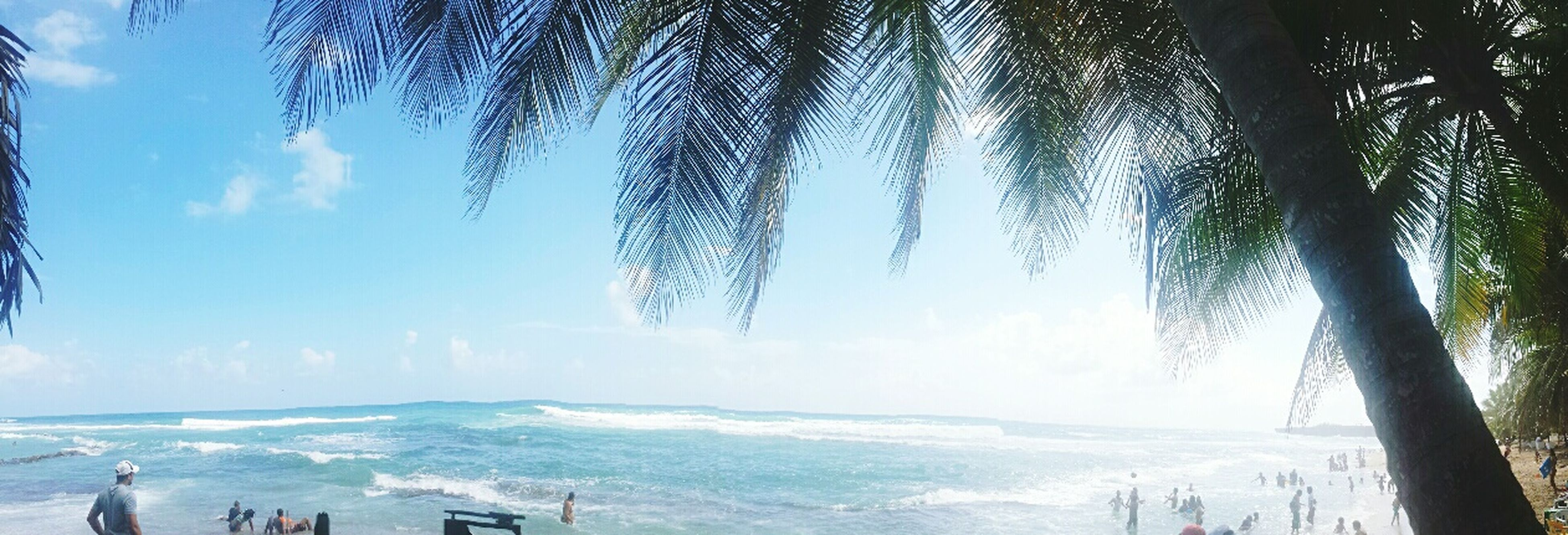 Beauty inland Lovingmycountry Caribbeangirl Welcometotheheaven DRfortheworld🌴 First Eyeem Photo