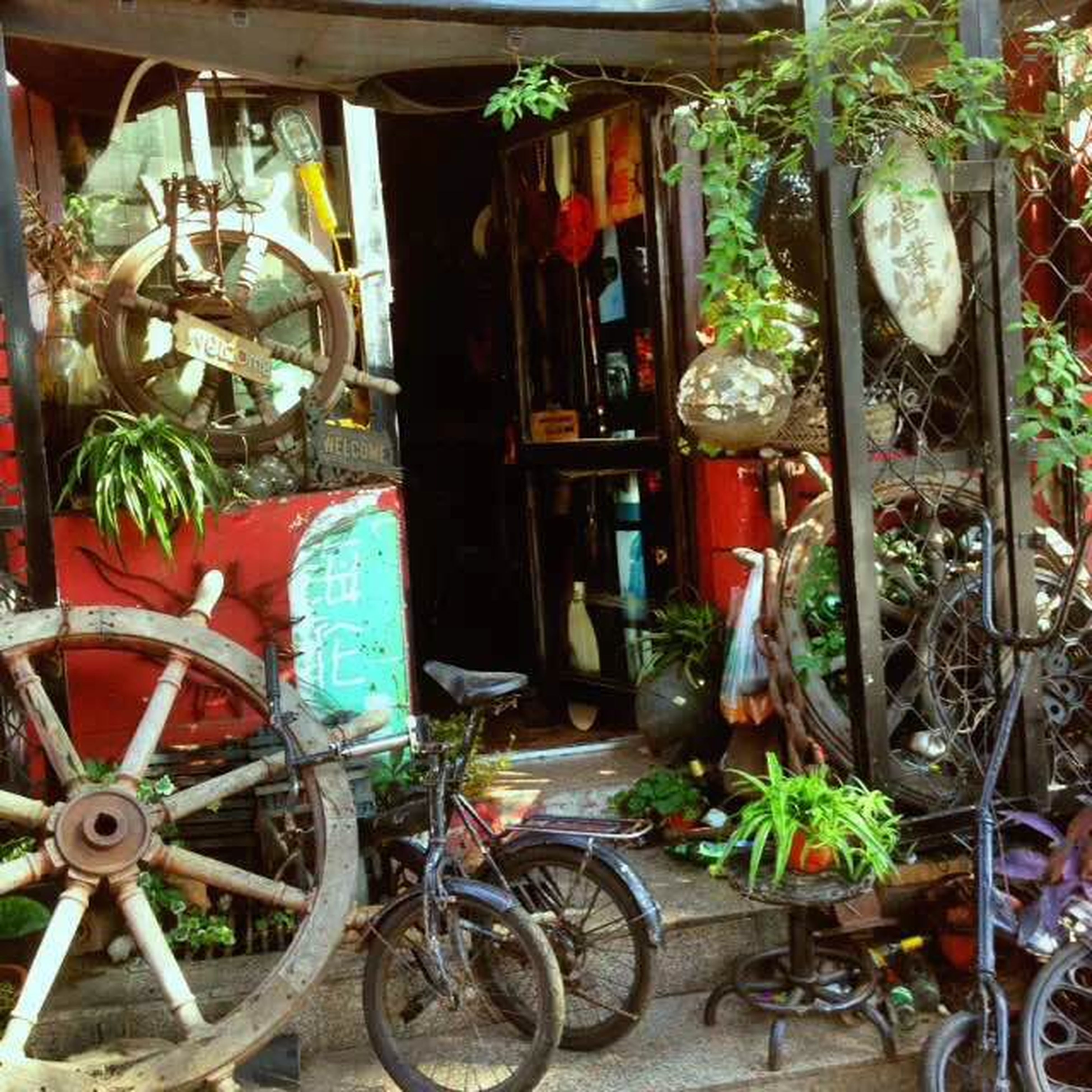 potted plant, bicycle, indoors, variation, house, built structure, plant, architecture, chair, no people, stationary, building exterior, land vehicle, table, day, large group of objects, choice, flower pot, parked, retail