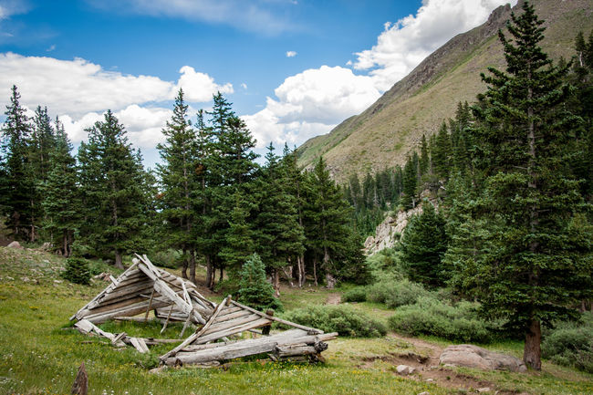 Abandoned Beauty In Nature Broken Damaged Deterioration Fallen Tree Forest Green Color Growth Landscape Log Mountain Nature Non-urban Scene Obsolete Old Outdoors Run-down Scenics Sky Tranquil Scene Tranquility Tree Wood - Material WoodLand