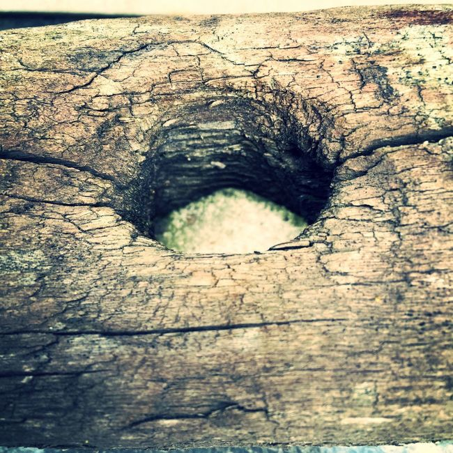 Hole In Wood Hole Wood Circle Shape Wood - Material Wooden Holes Hole In Wood Aged Aged Wood Wooden Post Textures And Surfaces Layers And Textures Wooden Texture Circles Shape Crop Cut Wood Photography Aged Beauty Objects Closeup Close-up Natural Background Designs Wood Carving