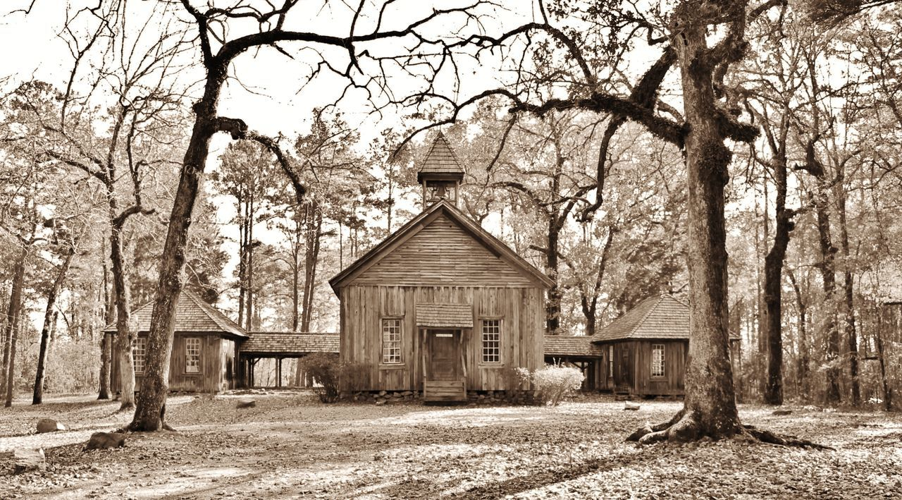 1900s Abandoned Antiquated Architecture Black And White Built Structure Rural Rustic SchoolHouse Tree Vintage Wooden