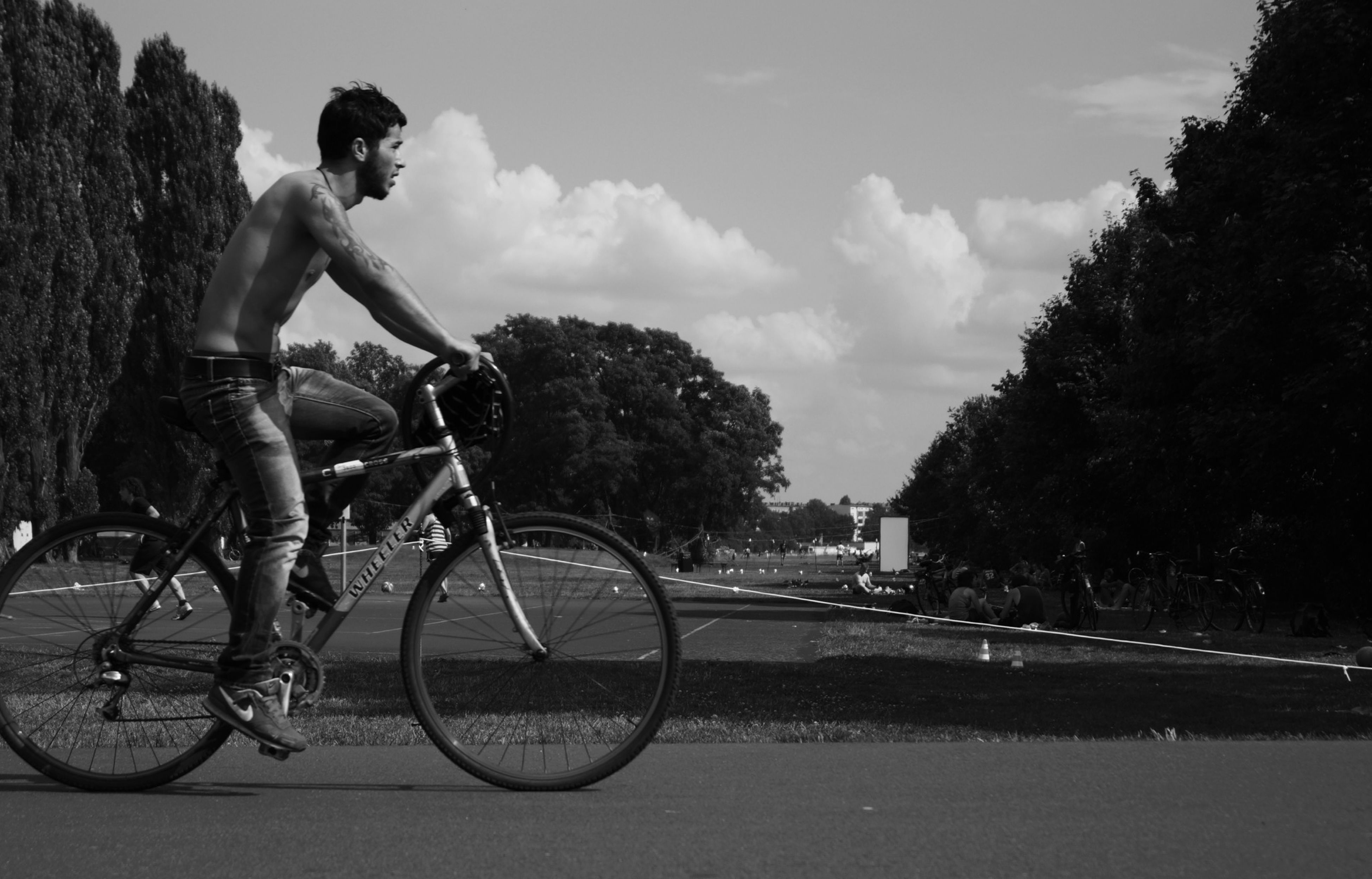 lifestyles, leisure activity, men, bicycle, transportation, riding, mode of transport, land vehicle, person, sky, cycling, full length, motion, on the move, sport, tree, unrecognizable person
