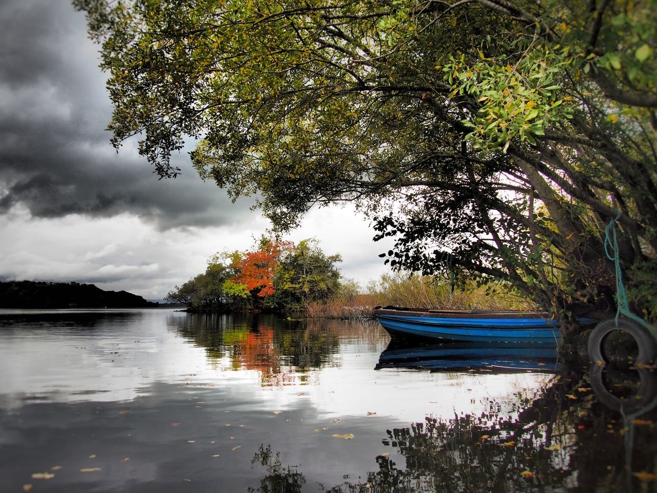 Lough Leane County Kerry Ireland Autumn Autumn Colours Reflection Nature Beauty In Nature Lake Outdoors Lough Leane Travel Destinations Lake View Lough Reflection Lake Landscapes Landscape Scenics Overhanging Trees Boat Autumn Colors