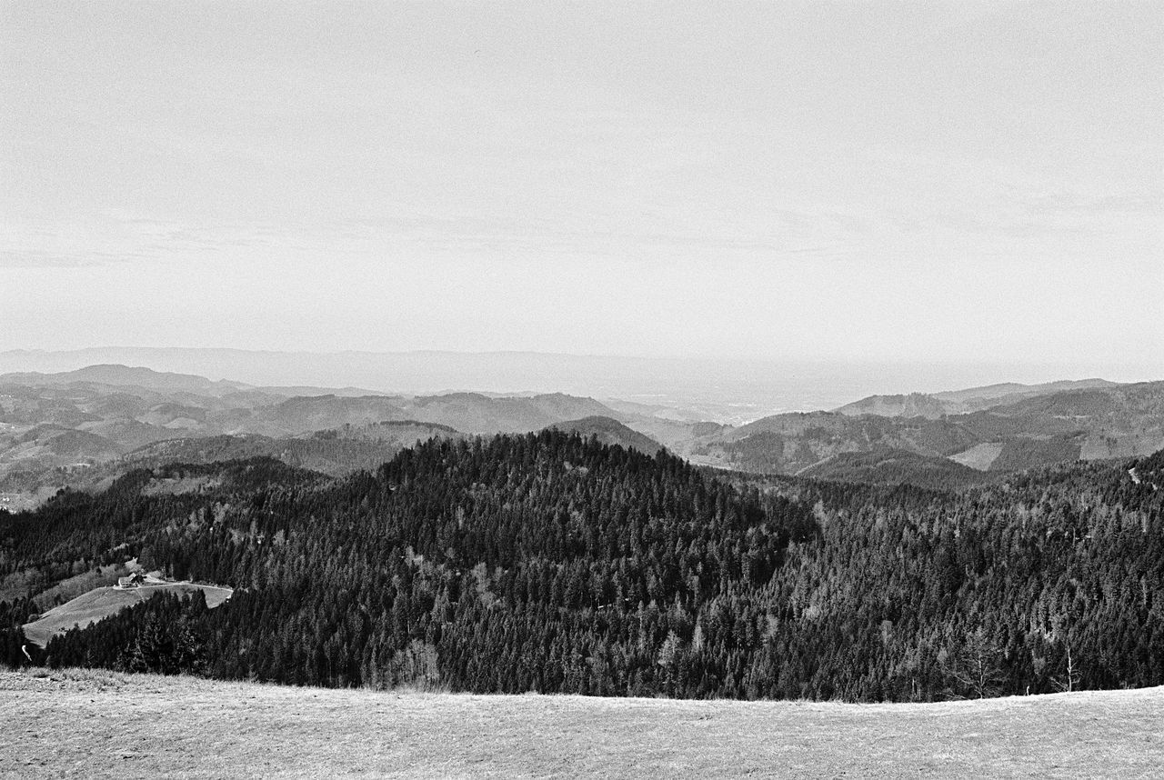 Landscape Mountain Nature Tranquil Scene Tranquility Scenics Beauty In Nature Outdoors Sky Non-urban Scene Mountain Range No People Day Snow Tree Analogue Photography Film Photography 35mm Filmisnotdead Blackandwhite