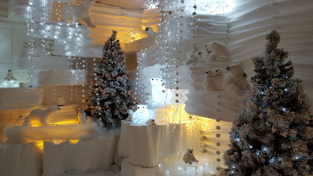 Villaggio di Natale Glass - Material Window Transparent Wet Drop Reflection Water Vehicle Interior Looking Through Window Close-up No People Illuminated Tree Washing Cleaning Nature Indoors  Frosted Glass Fragility Sky