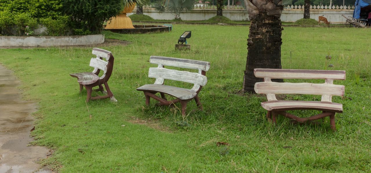 Beauty In Nature Bench Bird Day Empty Field Grass Grassland Green Color Growth Landscape Nature No People Outdoors Park - Man Made Space Seat Tranquility Tree