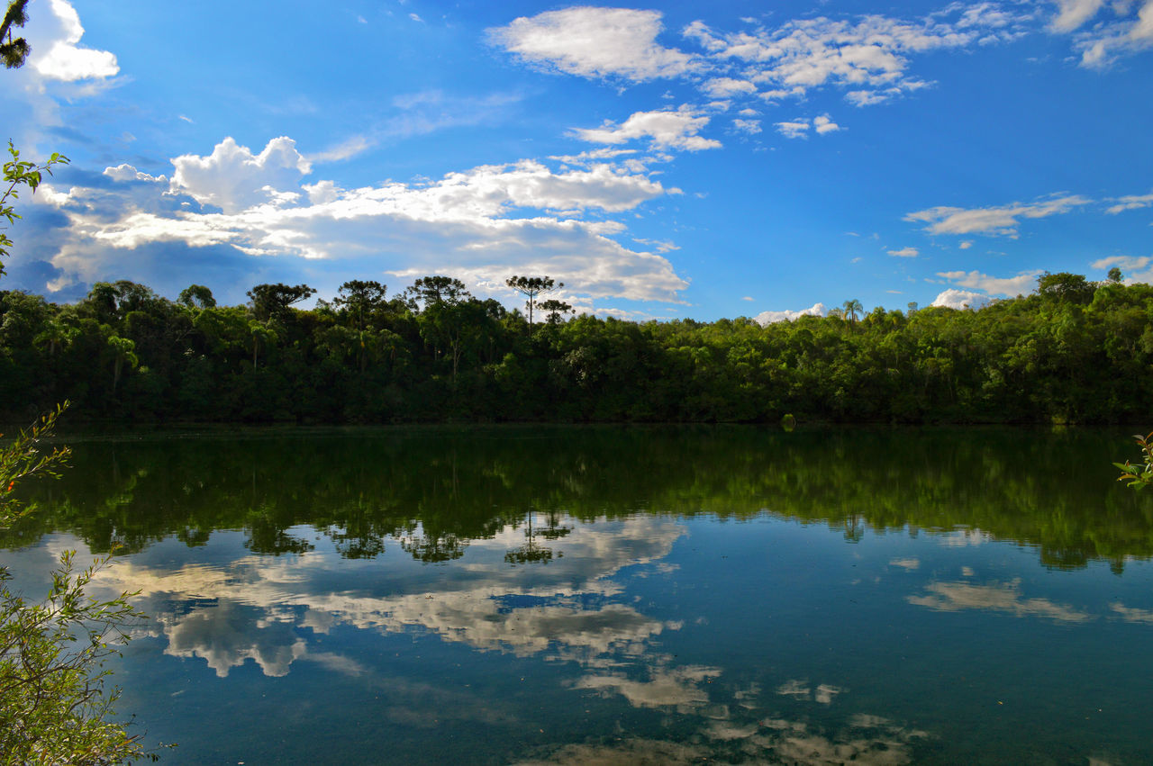 reflection, tree, nature, sky, water, blue, reflection lake, lake, outdoors, no people, tranquility, vacations, day, landscape, backgrounds, beauty in nature, natural parkland