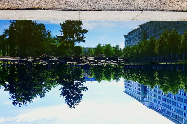 Perspective новый взгляд отражение отражение в воде Spiegelung Spiegel Hello World Sunny Day Water Reflections Water_collection Water Stopping Time Stoping Time Smartphone Photography The Week On EyeEm The Magic Mission Summer 2016 No People