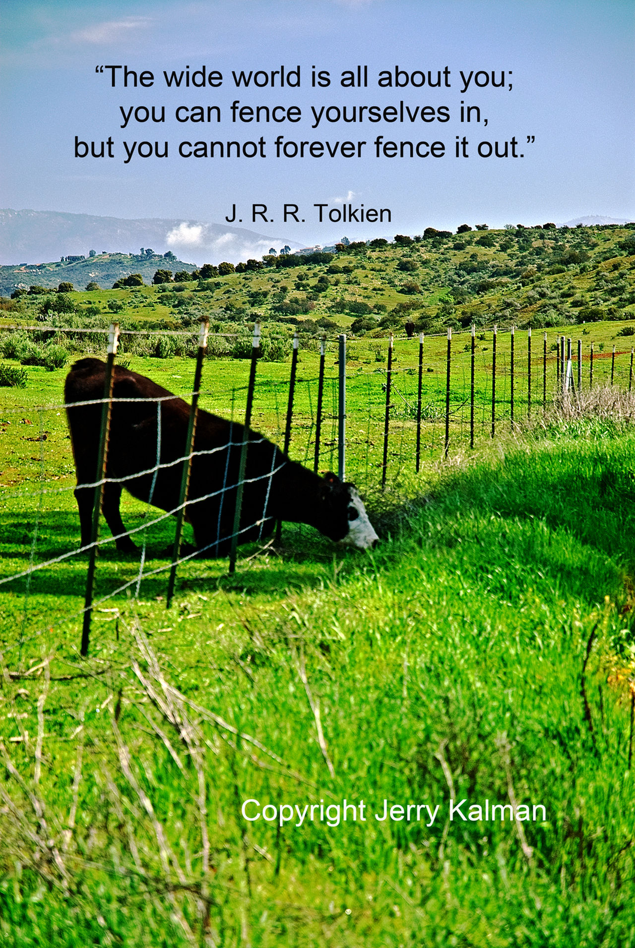 The grass seems to be greener at this pasture in #Bonsall and a fitting #quote by #JRRTolkein. If this #quotograph speaks to you, please share with others Bonsall California Check This Out Cow Grass Gtree Pasture Q Quotes Toledo