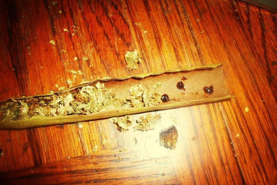 Weed Loud Rolling Up