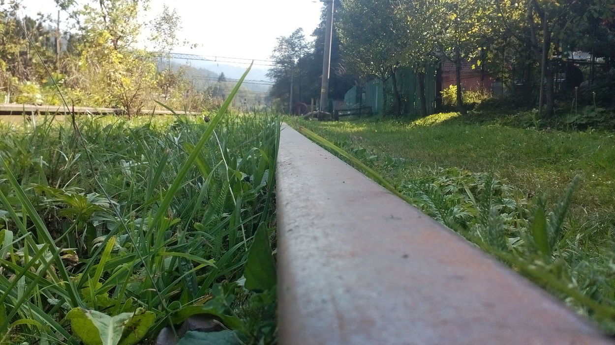 Grass Growth Tranquility Plant Tree The Way Forward Green Color Footpath Nature Fence Tranquil Scene Day Field Lawn Outdoors Sky Grassy Scenics Diminishing Perspective Narrow