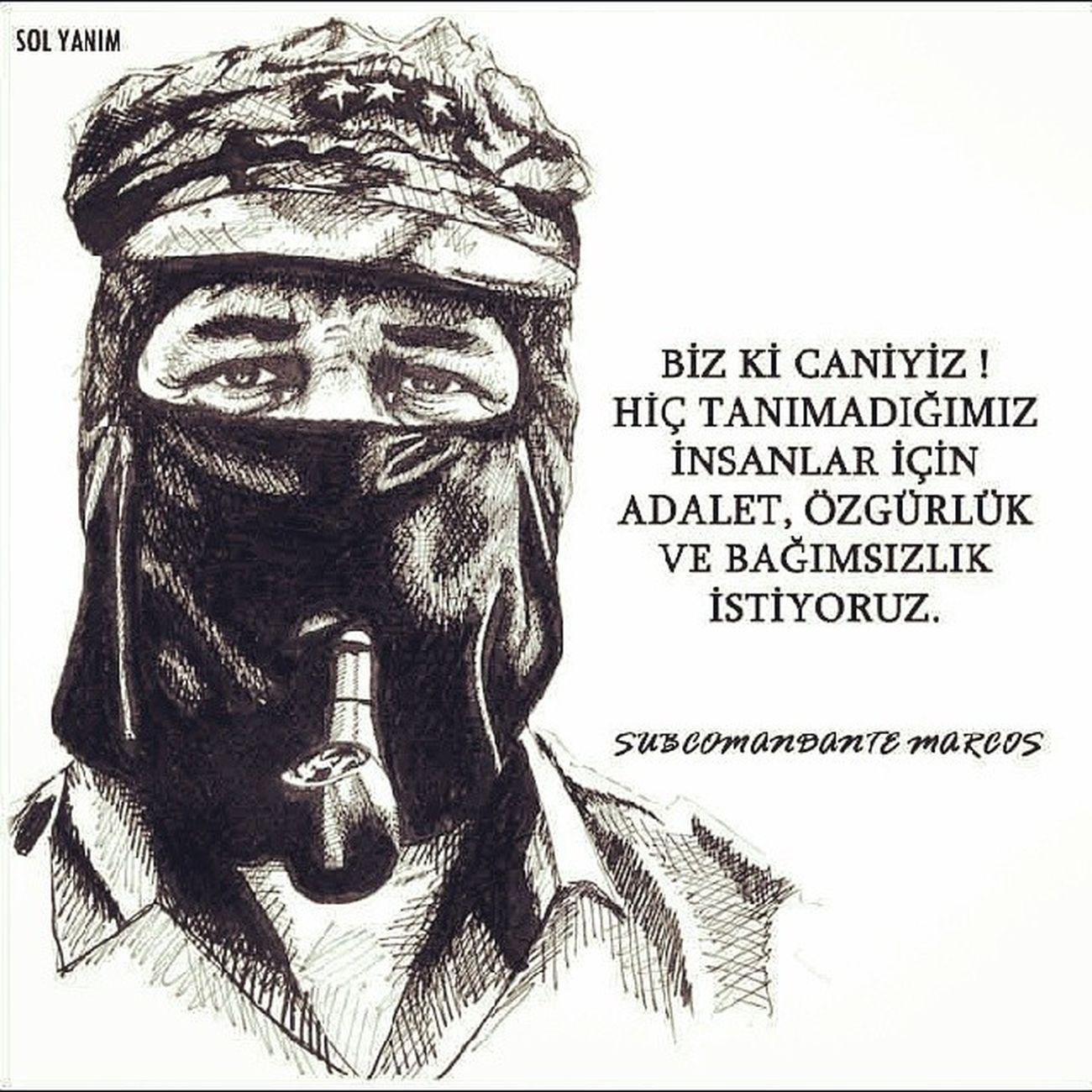 Devrim Zapata  Aşiti Azadî
