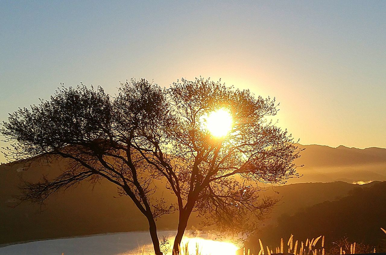 Lake Hodge Escondido, Ca Lake TreeSunrise . California Morning So Cal Mountains And Sky Landscapes With WhiteWall