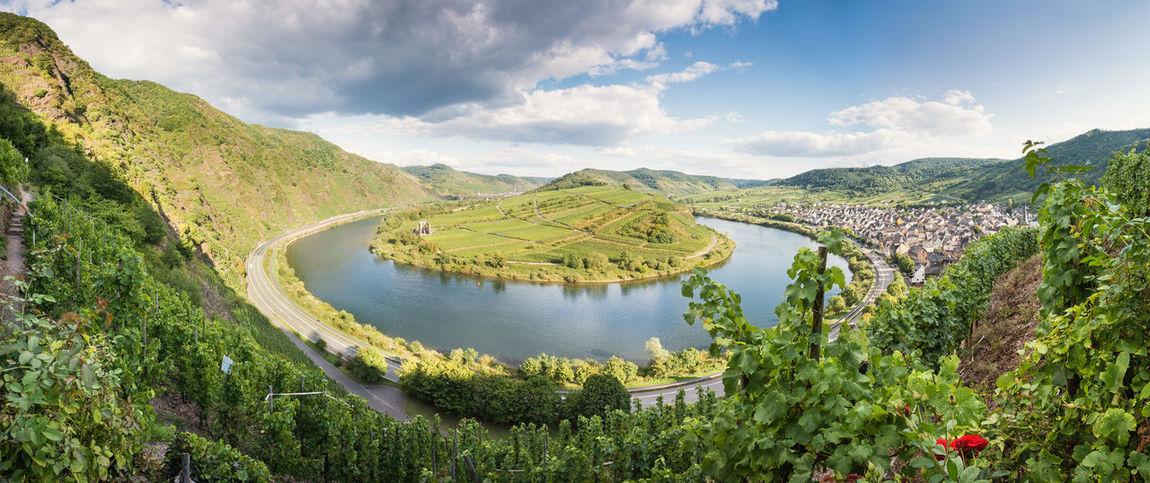 Germany Horseshoe Horseshoe Bend Landscape Landscapes With WhiteWall Mosel Moselschleife Ruin Village Vineyard Wine