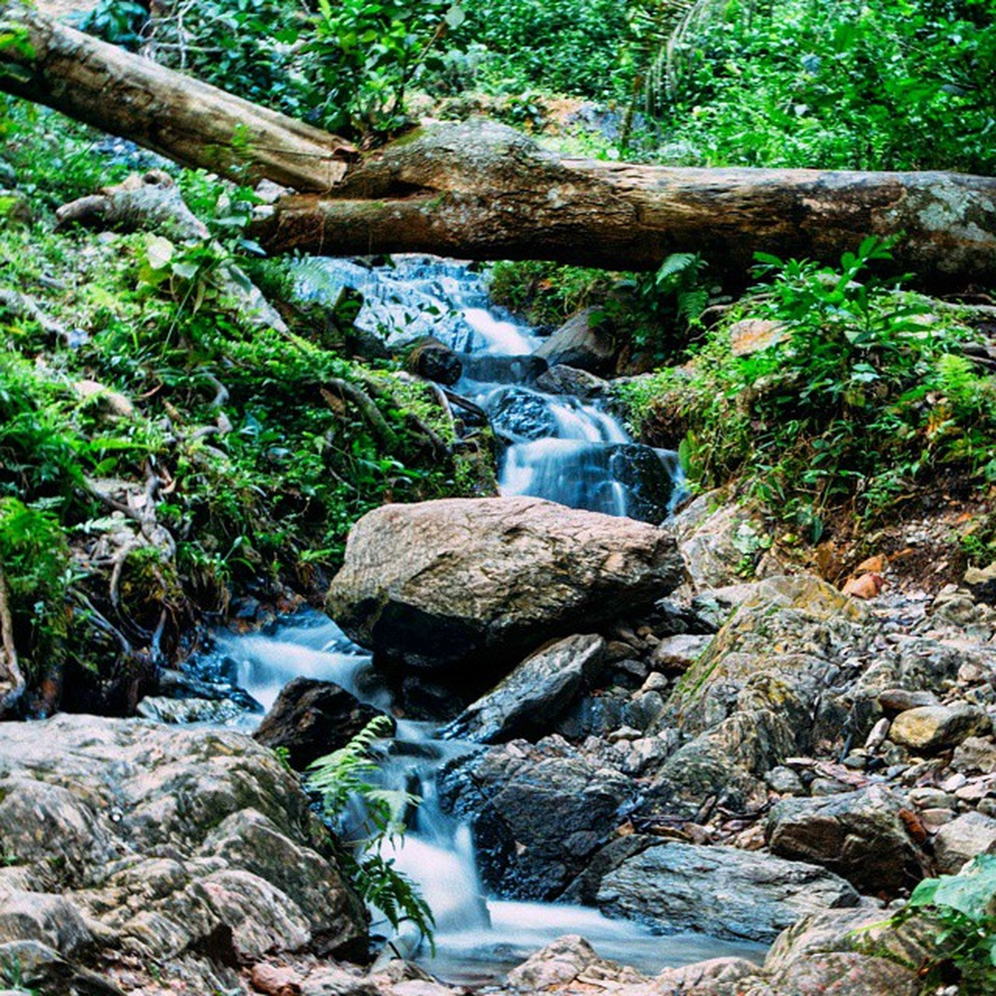 The warm springs of Ikogosi near Akure in OndoState . The place is very well maintained and has a very calming feel to it. Nigeria snapitoga Africa waterfalls travel travelinNigeria