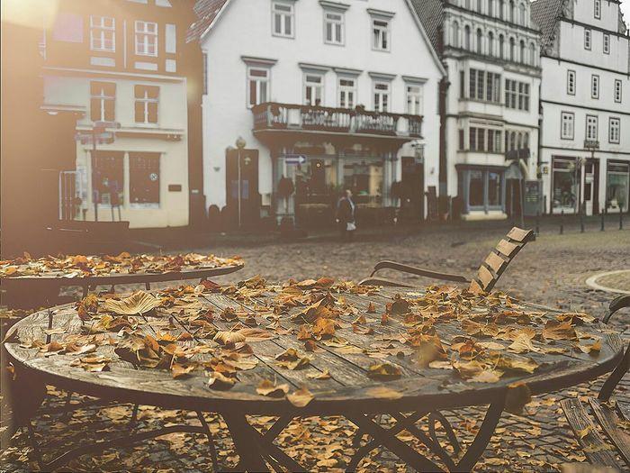 Streetphotography Streetart Fall Leaves Falllove Fall Autumn Autumn Colors Fall Beauty in Bad Salzuflen