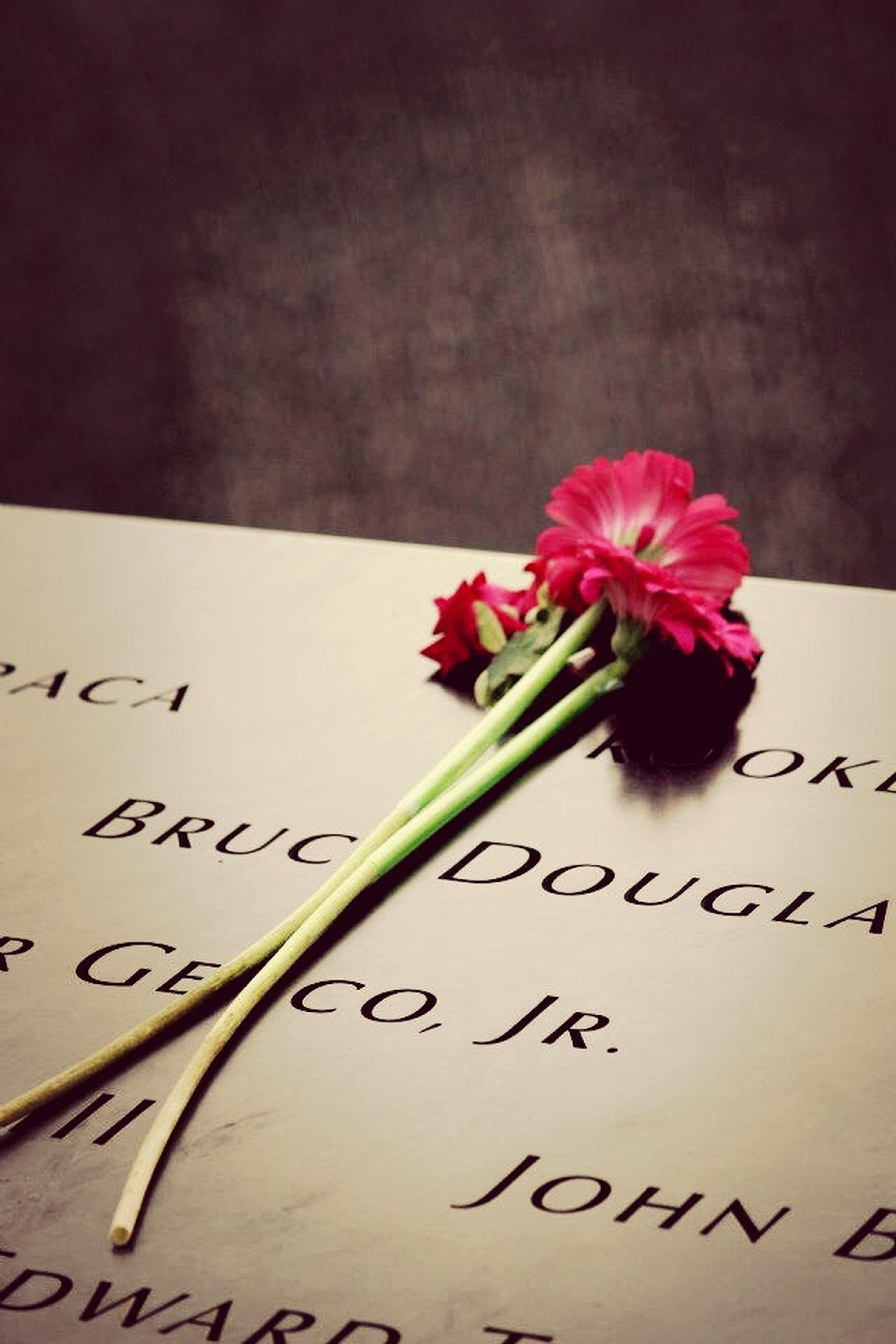 Sobering. 9/11 Memorial New York NYC