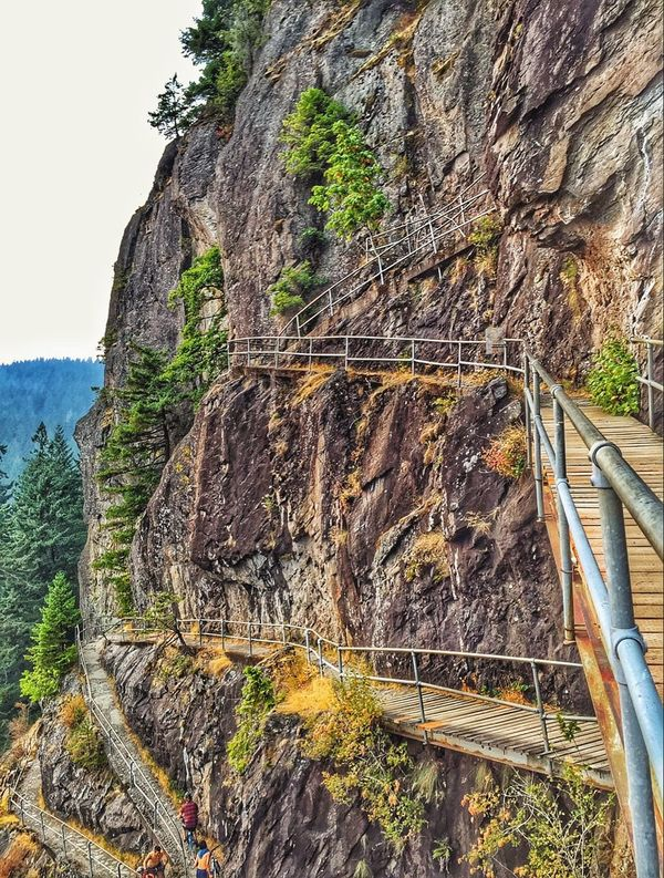 Beacon rock Trails.. Only 850 feet Up! The Explorer - 2015 Eyeem Awards EyeEm Nature Lover Oregon From My Point Of View Explore Your Outdoors IPhoneography Nature_collection Road Trip Hdr_Collection My Happy Place