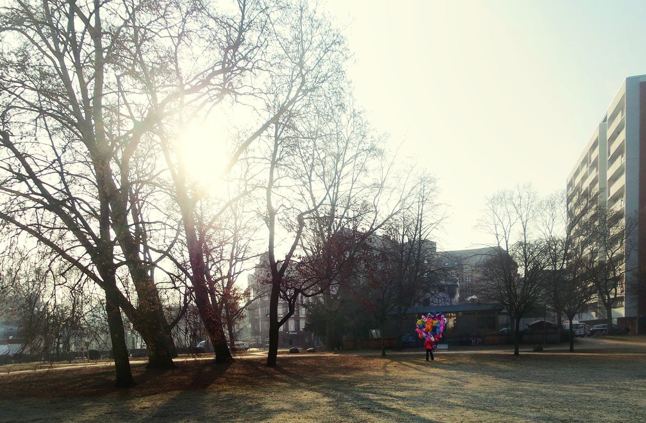 Balloon Seller On The Way To Work One Man Walking City Park Tree Sunlight Through The Trees Empty Park Real People Morning Light Tranquil Scene Story Behind The Picture Sunny Winter Day Cold Weather Frankfurt Am Main Germany🇩🇪 Adapted To The City