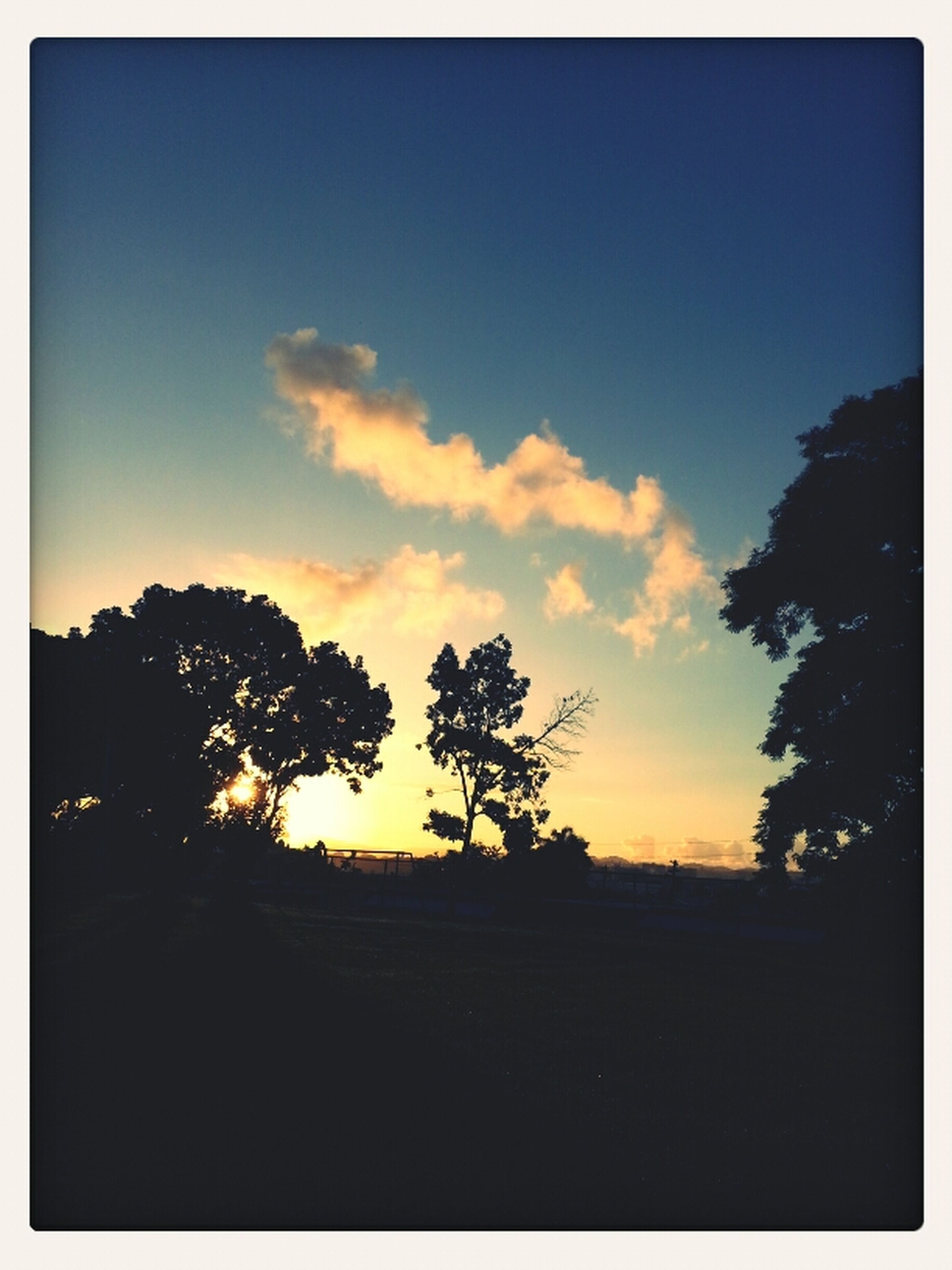 silhouette, sunset, tree, sky, transfer print, tranquil scene, tranquility, scenics, beauty in nature, landscape, auto post production filter, nature, dark, copy space, cloud - sky, cloud, field, dusk, blue, idyllic