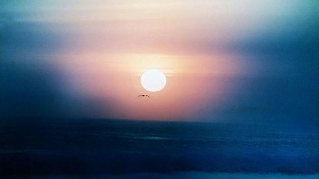 Amaterasu Sunset Nature Ocean Wanderlust Beach Life Brazil Travel Photography EyeEm Nature Lover Sky_collection Arraialdocabo Eye4photography  Eye4enchanting Eye4emotions