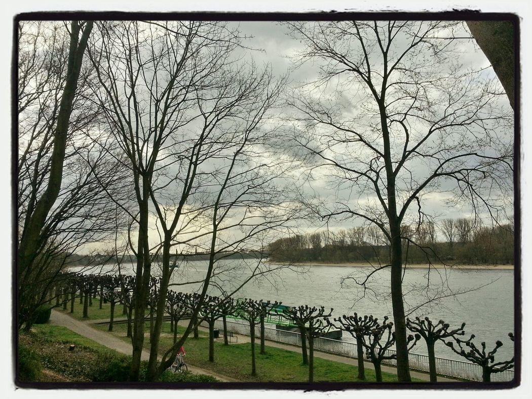 geknipstes.. ;) Taking Photos Urban Landscape Urban Nature Water
