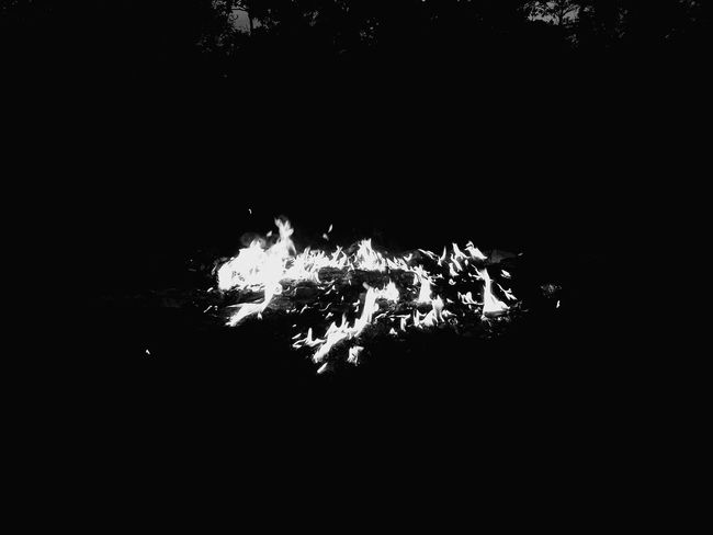Jungle Life Nature Wildlife Photography No Edit/no Filter Kolkata Fresh Thermal Image EyeEm Nature Lover Fire And Smoke Eyemphotography Hello World Suman Ss India Fire And Flames Fire By Human Fire In Nature Fire Lamp Blacksmoke Black & White Nature Photography Showing Imperfection Telling Stories Differently