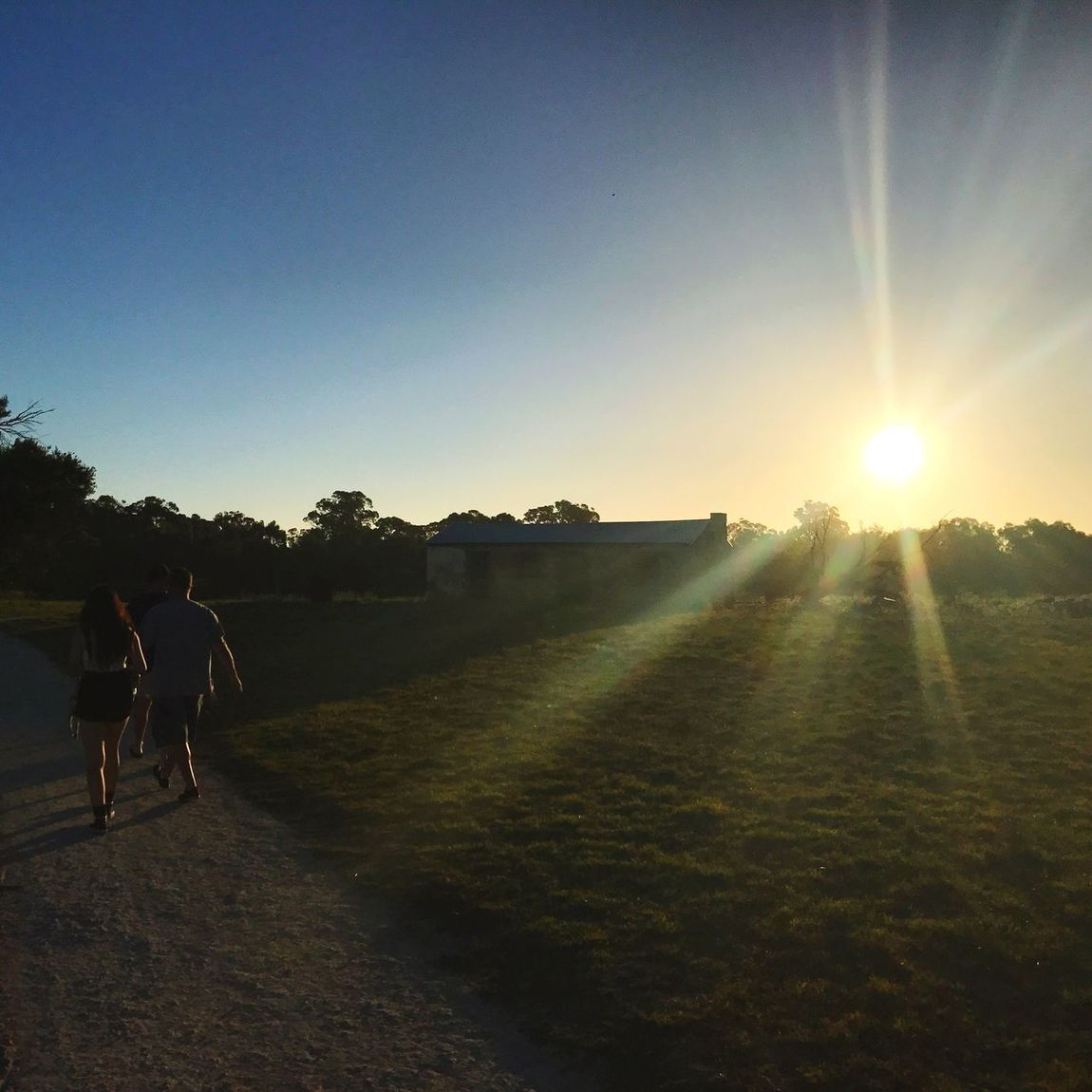 Sunset Sun Sunlight Walking Full Length Two People Field Nature Clear Sky Real People Men Outdoors Sky Friendship Mammal Day People