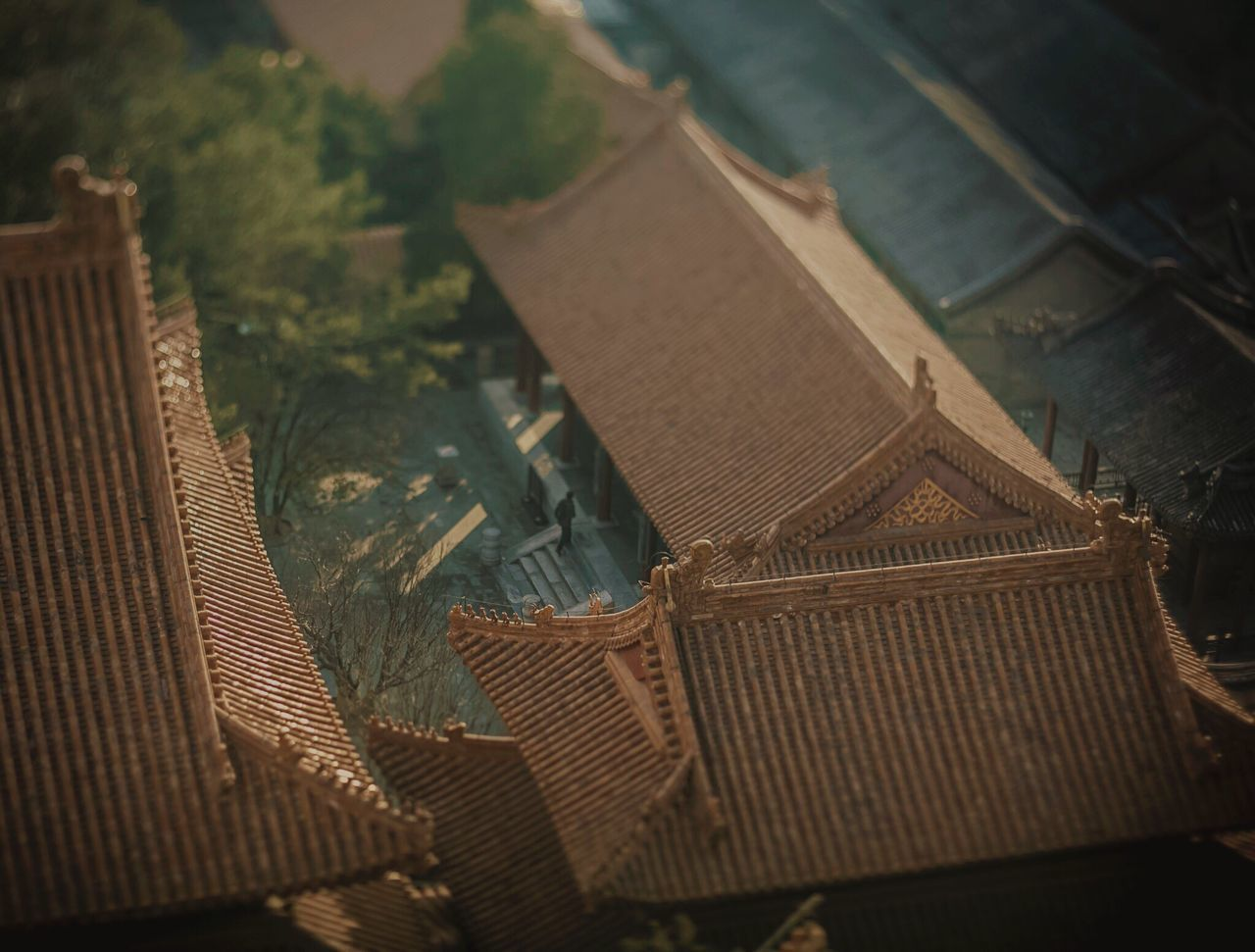 Toy man in a toy palace. China Outdoors Summer Palace Summer Palace Beijing Beijing China Beijing Tiltshift Long Distance  Miniature Effect 北京 Beijing Scenes BEIJING 北京 Architecturephotography The Architect - 2017 EyeEm Awards