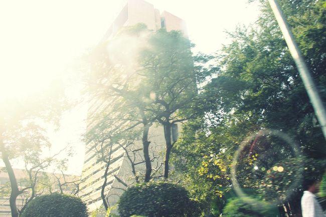 Delhi !!!!! Sobig Manmade Beautiful This Is India! <3 Megacity