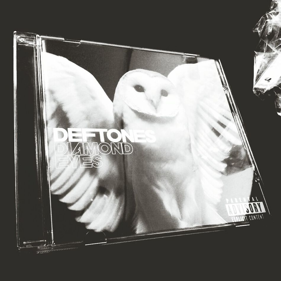 Isn't that Pretty Deftones Diamond Eyes  Owl