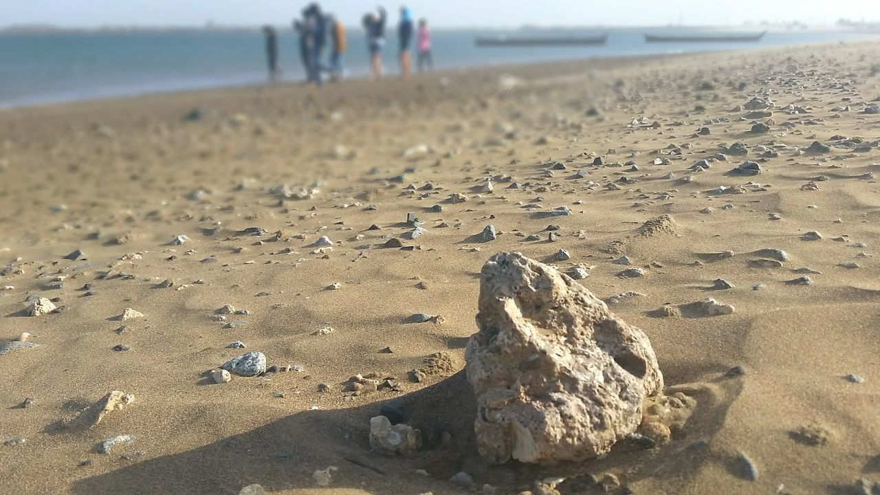 Beach Sand Sea Nature Vacations Outdoors Beauty In Nature Fujairah Photography UAE Rock Sea Life Day Close-up