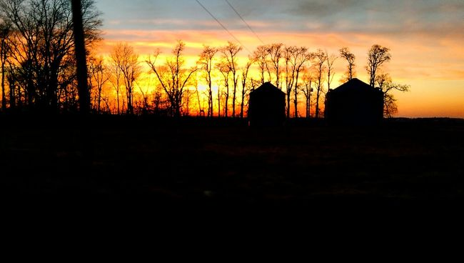 Hoosier Farmland Sunset